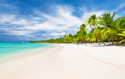 Bright blue ocean, white sand, and palm trees on Caribbean tour