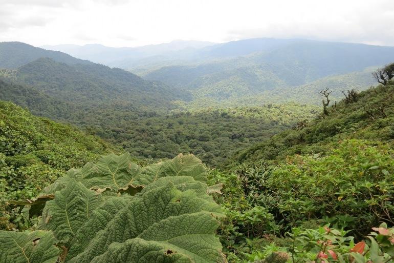 Valley Monteverde_Costa Rica_2400159_P