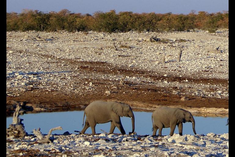 Cape Town Etosha National Park Namibia & South Africa's Garden Route Trip