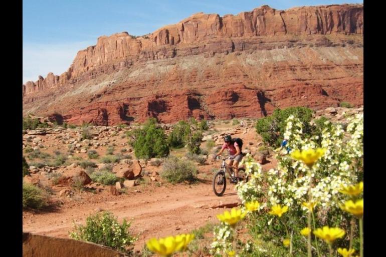 Grand Staircase-Escalante 5 Day Mountain Bike Trip tour