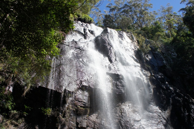 Waterfall View of Springbrook National Park, Australia