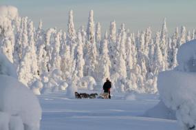 Finnish Wilderness Week tour