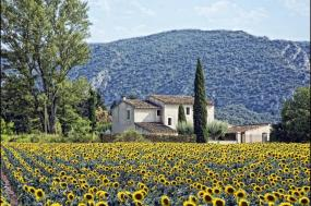 Self-Guided Cycling in Provence & the Luberon tour