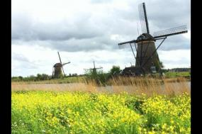 Self-Guided Highlights of Holland by Bike tour