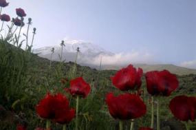 Damavand Expedition Iran tour