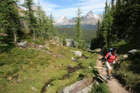 Canadian Rockies Wilderness Walks tour