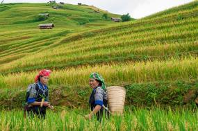 Sapa Adventure tour