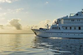 Classic Galapagos - Central & Western Islands (M/Y Coral) tour