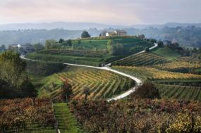 Walking the Prosecco Hills  tour