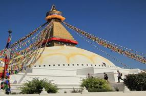 Icons of India: The Taj, Tigers & Beyond with Southern India & Kathmandu tour