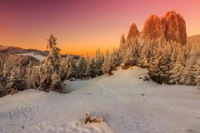 Transylvania Winter Walk & Snowshoe tour