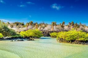 Galapagos: In Darwin's Footsteps tour