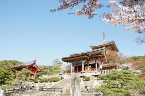 9 Day Tokyo & Kyoto 2018 Itinerary tour