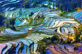 6-Day Yunnan Photography Tour: Kunming - Jianshui - Yuanyang tour