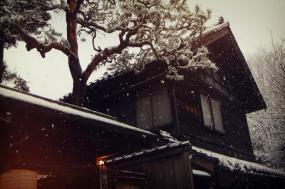 Japan Winter Highlights tour