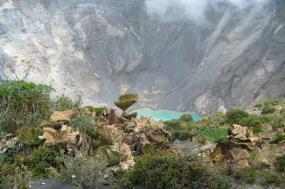 Coach Tour: Natural wonders of Costa Rica tour