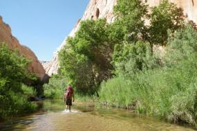 3 – Day Escalante River Backpacking
