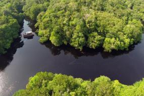 Culture & Cruising the Amazon