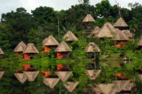Amazon Rainforest Adventure tour