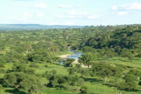 6-Day The Tanzania Spectacular tour