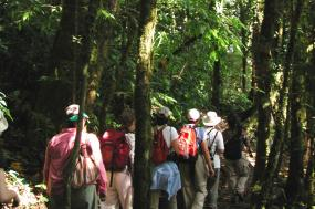 Costa Rica Tropical Adventure tour