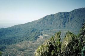Kilimanjaro Climbing-6 days Umbwe Route tour
