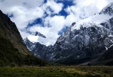 New Zealand Experience with Rural Homestay -  2017 tour