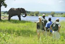 9 Day Adventure Africa Luxury Safari tour