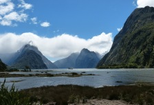 Milford Sound Attractions