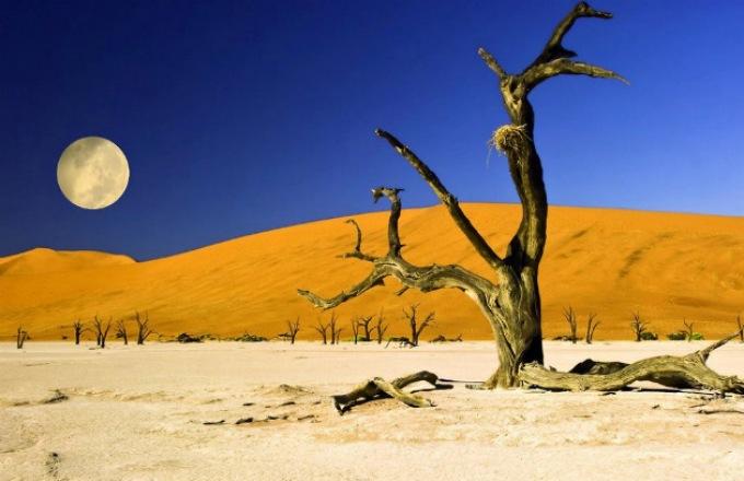 Desert Tracker (19 days) tour
