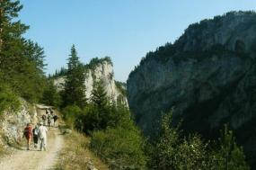 The Natural Wonders of the Rhodopes / Bulgaria
