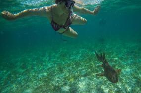 Belize & Tikal Adventure tour
