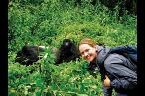 Mountain Gorillas to the Mara