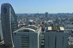 Tokyo & Seoul tour