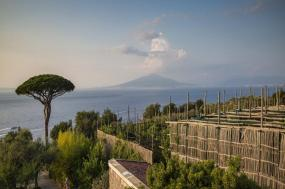 Local Living Italy—Sorrento tour