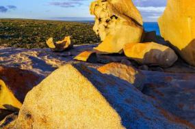 Tastes of Southern Australia summer 2018