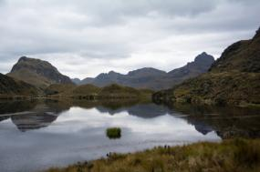 Jungle, Highlands And Islands tour
