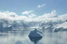 Polar Circle Air-Cruise - Ocean Nova tour