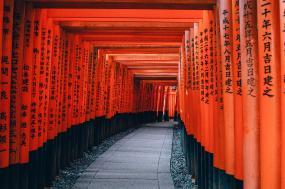 Tokyo to Kyoto Biking tour