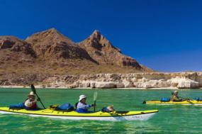 Kayak & Whale Watching Combo tour