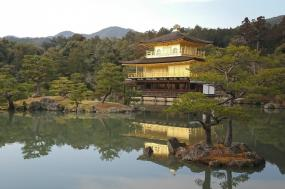 Insider's Japan tour