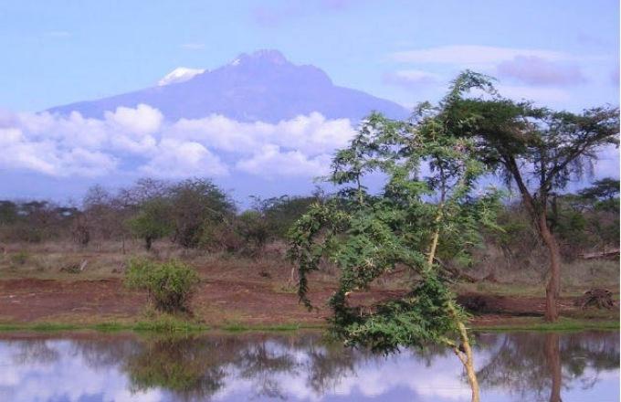 Kilimanjaro Hike - Marangu Route tour