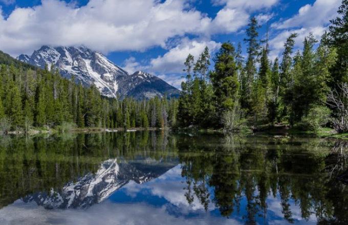 Yellowstone and Grand Teton National Parks  tour