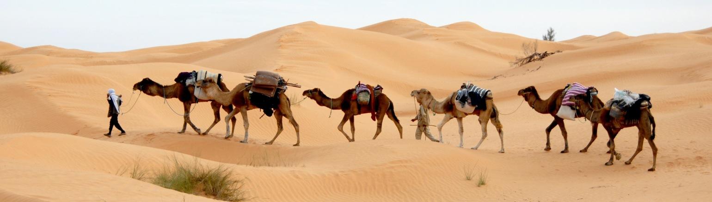 Tours Destinations North Africa