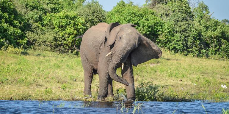 Botswana & Victoria Falls Adventure tour