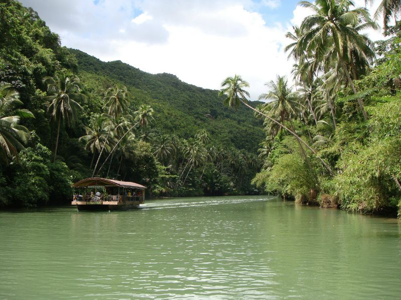 Buhol Rainforest in the Philippines