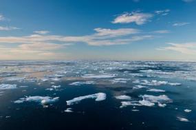 Spitsbergen Explorer - Paul Goldstein & Mark Carwardine Photographic Charter  tour