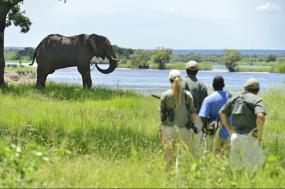 9 Day Adventure Africa Luxury Safari tour