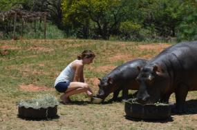 South Africa – Wildlife Conservation Experience tour