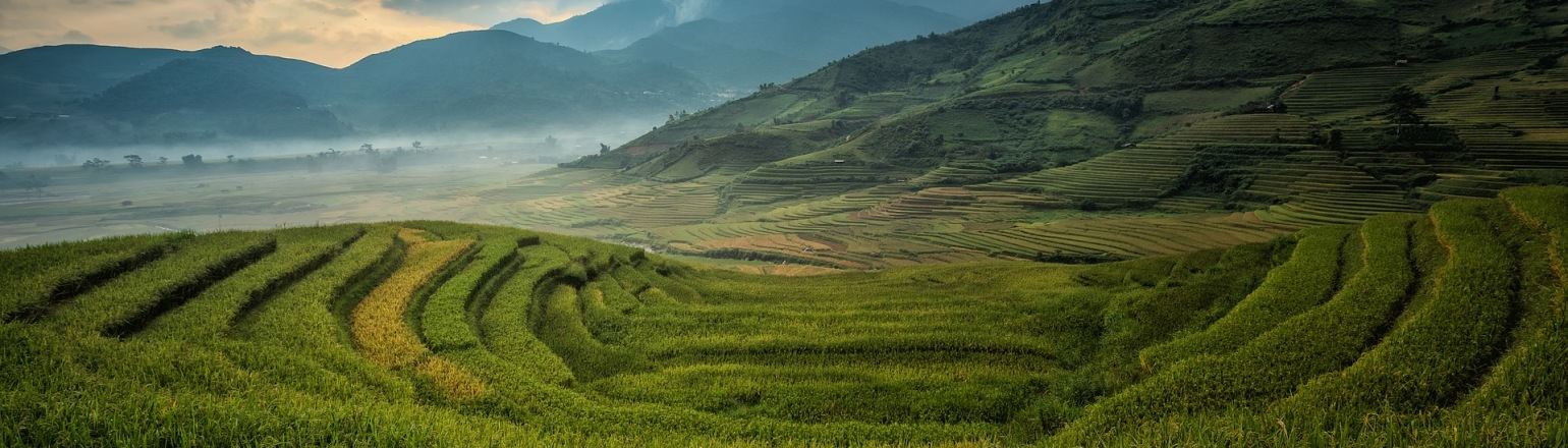 Agricultural and Garden View of Sapa, China